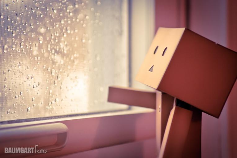 Danboard rainy window